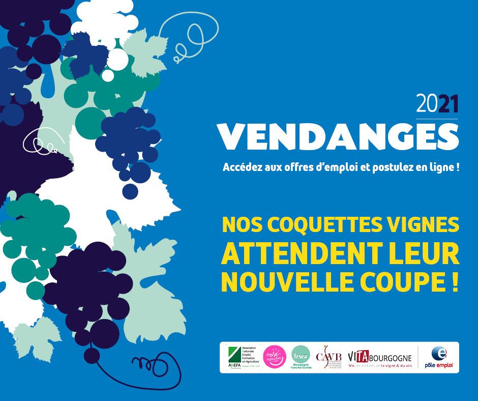 Campagne_vendanges_2021
